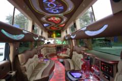 limuzin_097